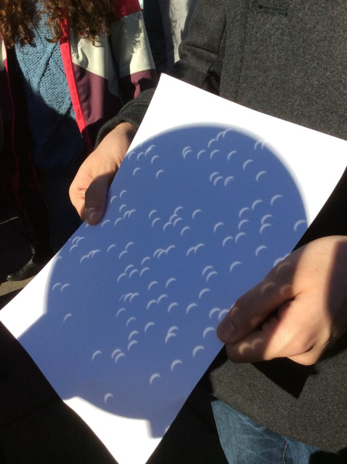The European #eclipse2015 viewed through an SDSS plate. Credit: Rita Tojeiro.
